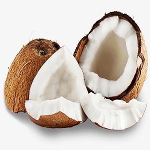 Fresh Coconut Meat Frozen